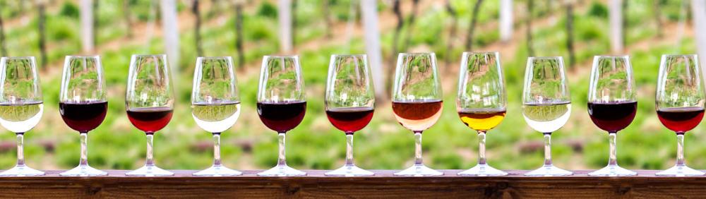 Vinskole med vinsmagninger